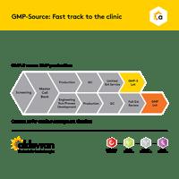 GMPS brochure thumb-0619