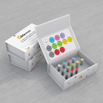 IVT-Enzyme-Kit