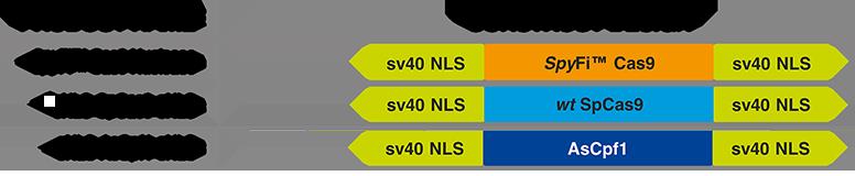 ald-SpyFi chart-0718