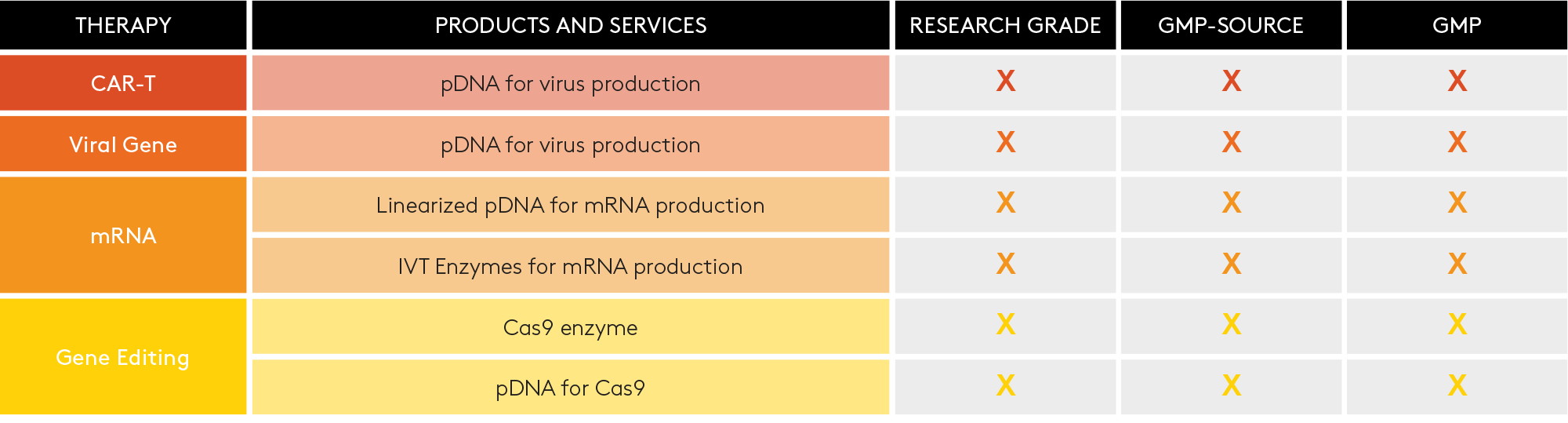 mRNA production for Gene Therapy