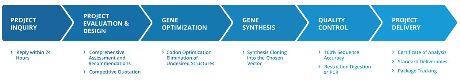Full-Service Gene Synthesis