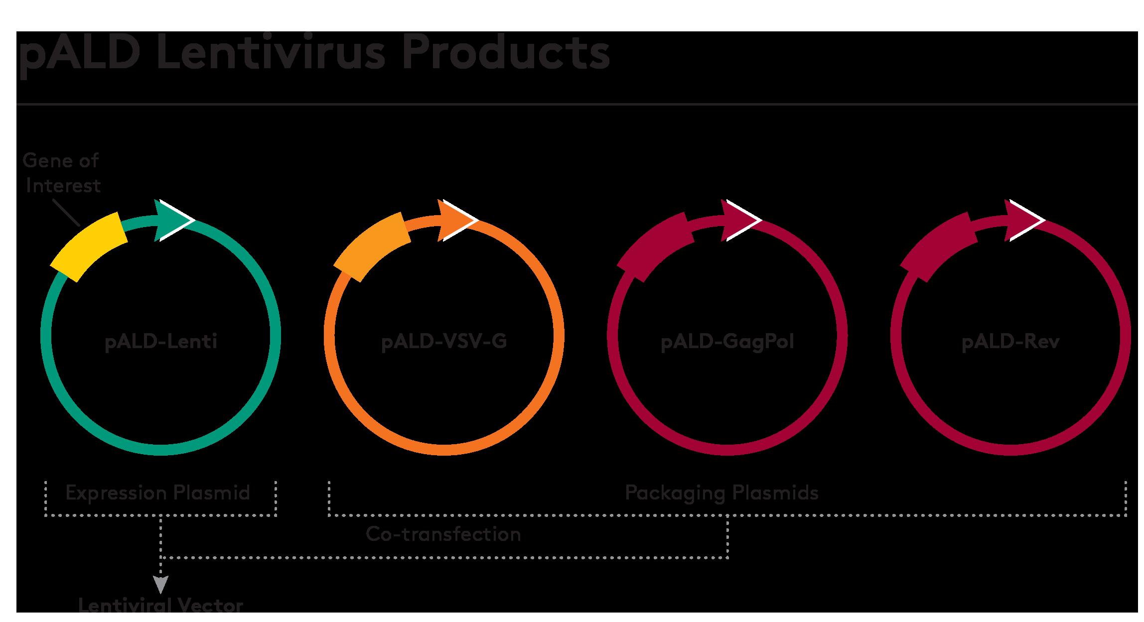 pALD-Lentivirus-Products graphic