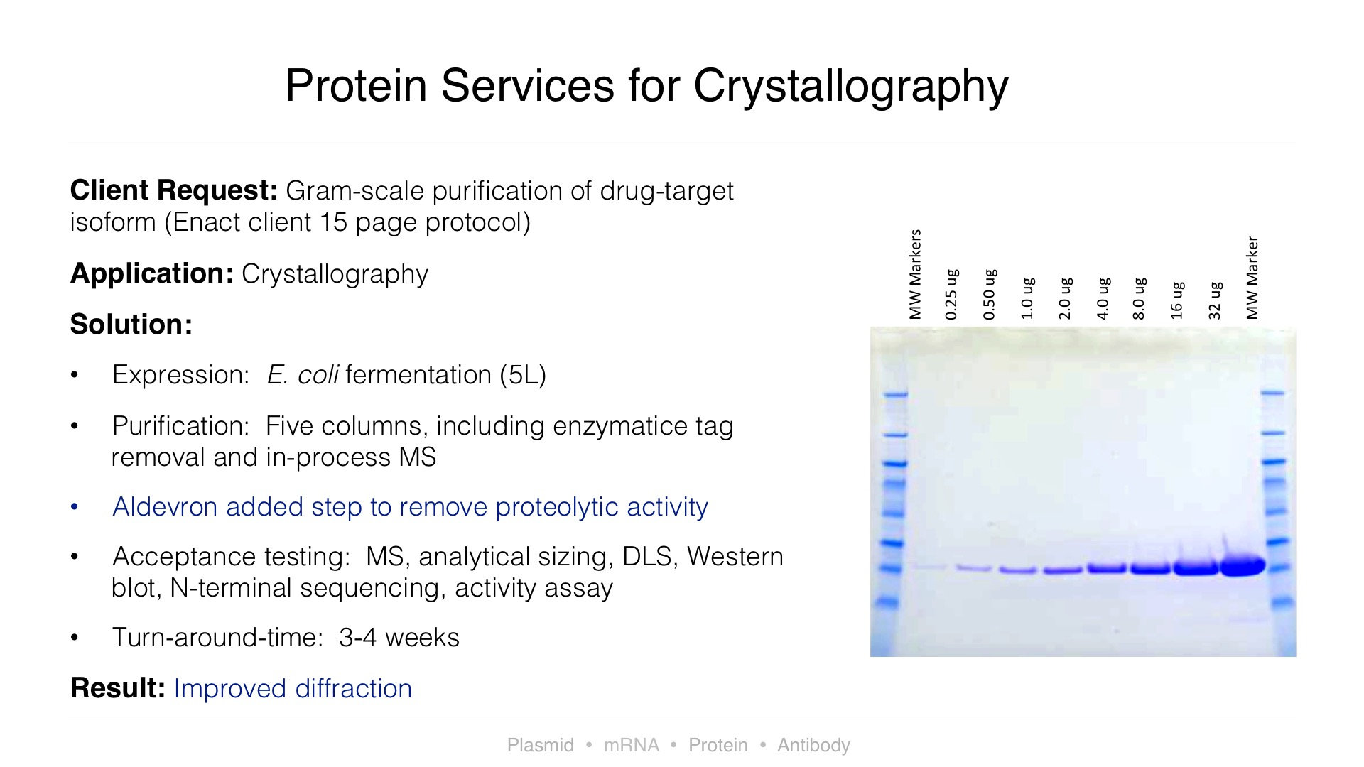 Protein Services for Cystallography